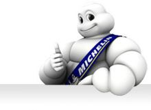 MichelinCup